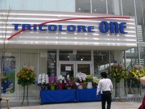 Toricolore One