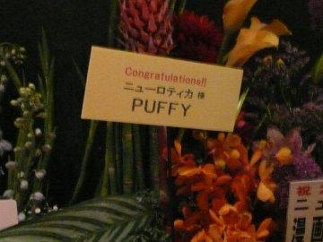 Puffyから花