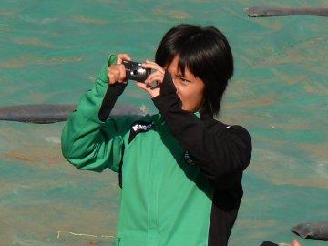 写真を撮る岩渕真奈