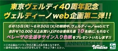 Verdino Web Store