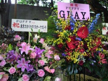 東京スカパラダイスオーケストラ・GLAY