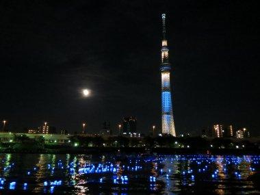 東京ホタル(ひかりのシンフォニー)