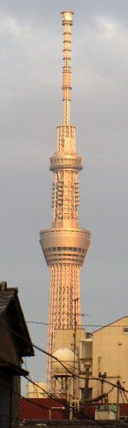東京スカイツリー(夕方)